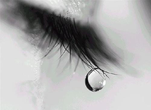 安心して泣ける場所。涙の効能。