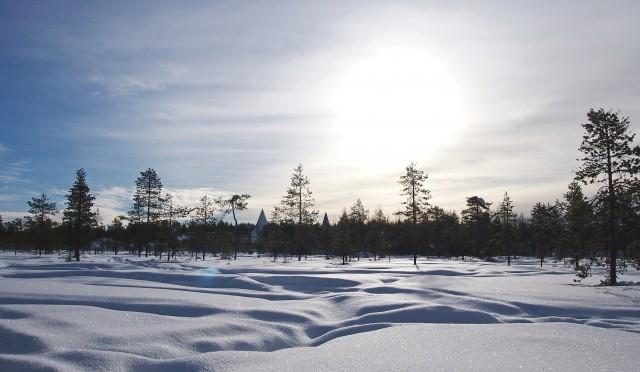 大雪になりました。養生して、水太りを防ぎましょう。12月07日
